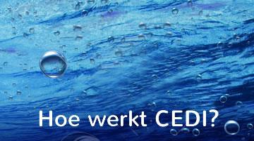 CEDI-Video